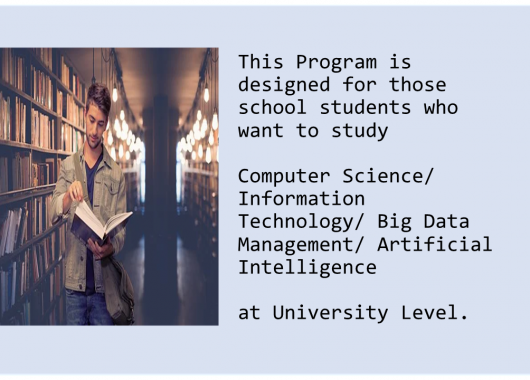 Pre-University Computer Science Program